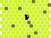 Salirse el gato